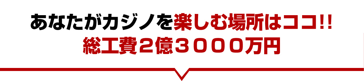Total construction cost is ¥230,000,000